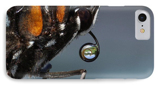 Drinking Dew Drops 4 IPhone Case