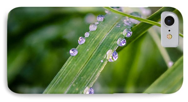Drops On Grass IPhone Case
