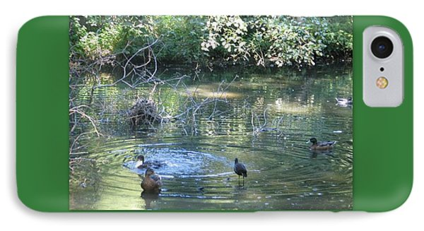 Ducks A Dabbling IPhone Case