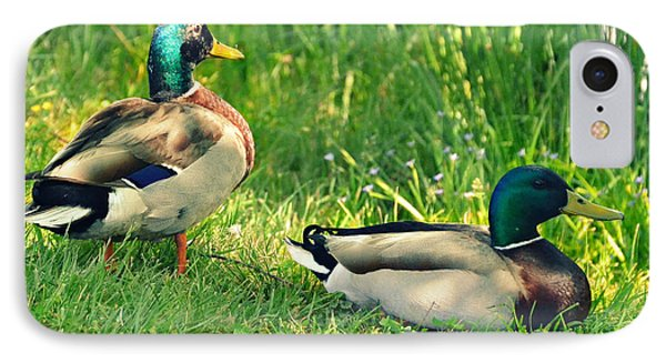 Ducks At The Pond IPhone Case
