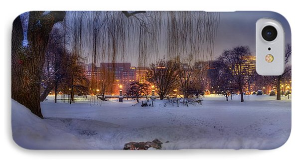 Ducks In Boston Public Garden In The Snow IPhone Case