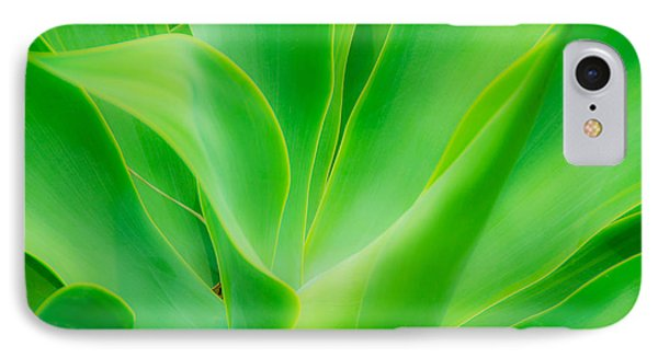 Dwarf Agave IPhone Case