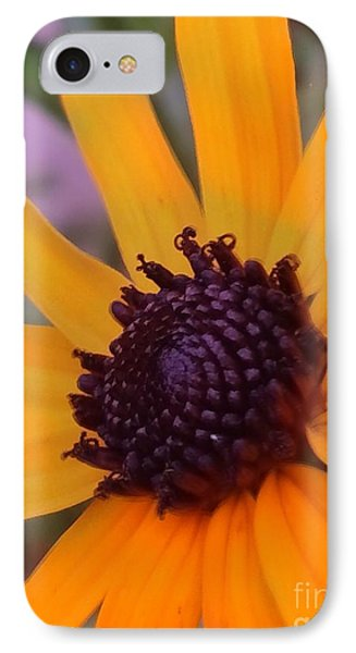 Early Morning Susan IPhone Case