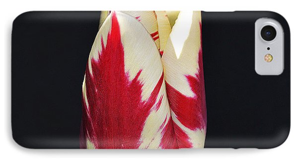 Easter Greetings - Twinkle Tulip IPhone Case