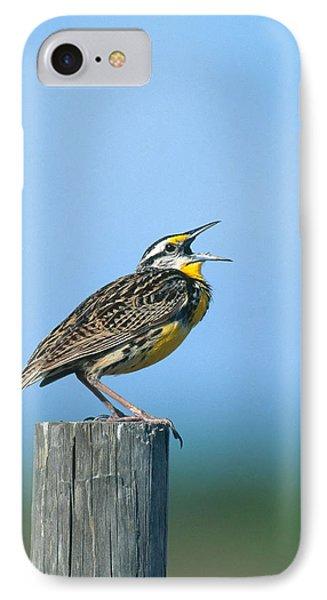 Eastern Meadowlark IPhone Case
