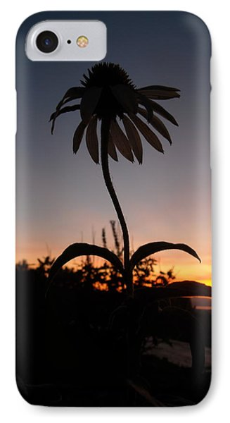 Echinacea Sunset IPhone Case