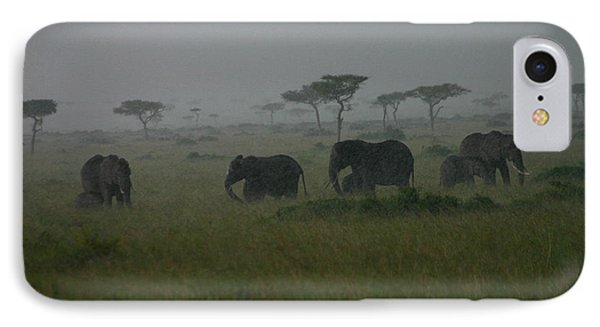 Elephants In Heavy Rain IPhone Case