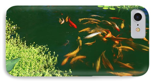 Elevated View Of School Of Koi Fish IPhone Case
