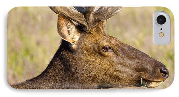 Elk Profile IPhone Case