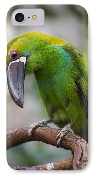 Emerald Toucanet IPhone Case