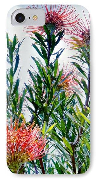 Enchanting Gardens 42 IPhone Case