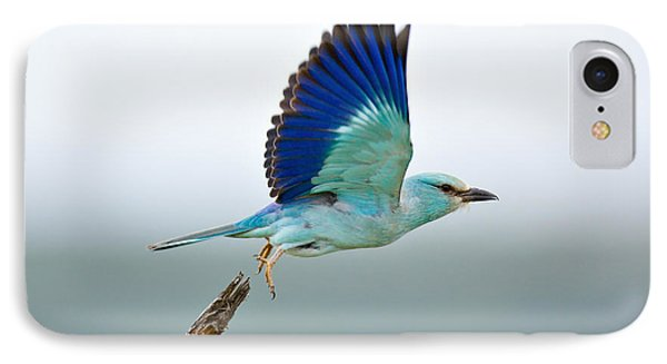 Africa iPhone 8 Case - Eurasian Roller by Johan Swanepoel