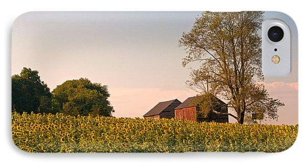 Evening On The Sunflower Farm IPhone Case