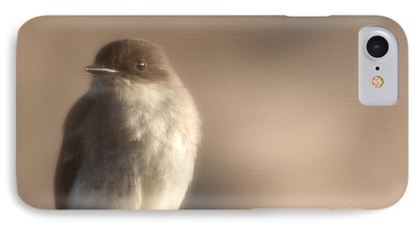 Evening Phoebe IPhone Case