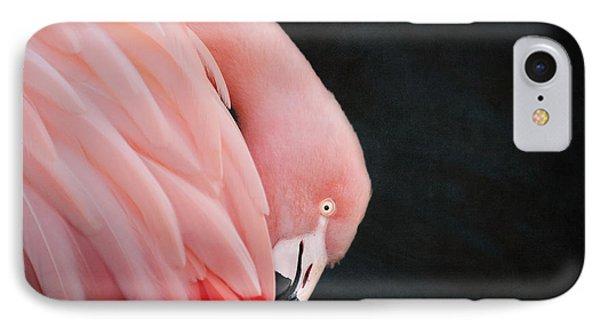 Exquisite Pink Flamingo #5 IPhone Case