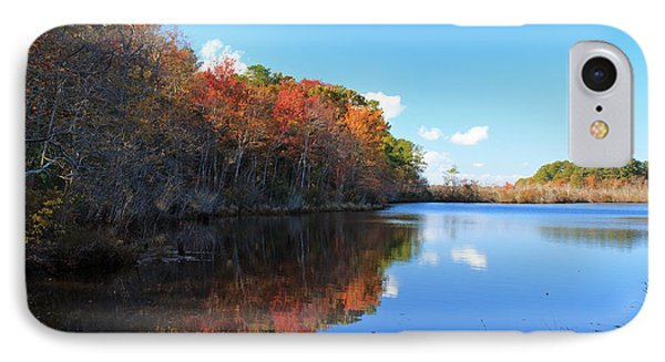 Fall At Turkel Pond IPhone Case