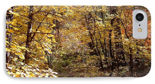 Fall Colors 6405 IPhone Case