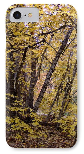 Fall Colors 6435 IPhone Case