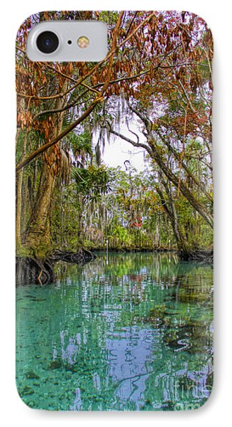 Fall Colors Along Three Sisters Spring Run IPhone Case