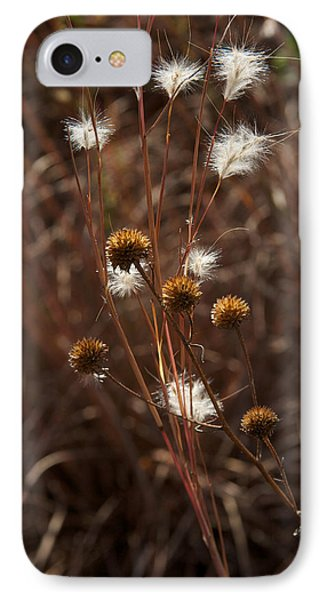 Fall Feathers IPhone Case