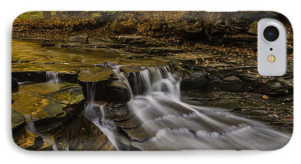 Fall In The Metroparks IPhone Case