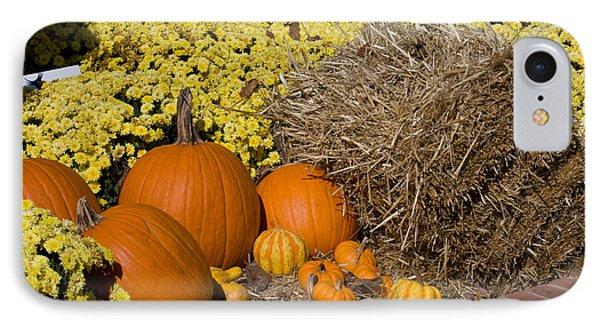 Fall Pumpkin Scene IPhone Case