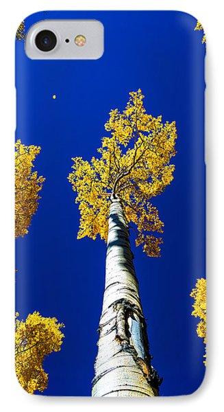 Falling Leaf IPhone Case