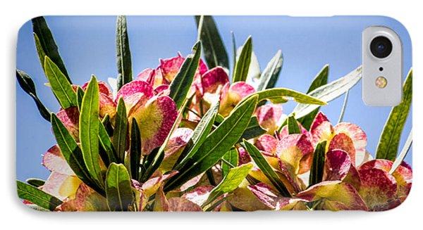Fanned Flowers IPhone Case