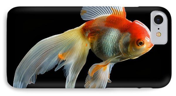 Fantail Goldfish IPhone Case