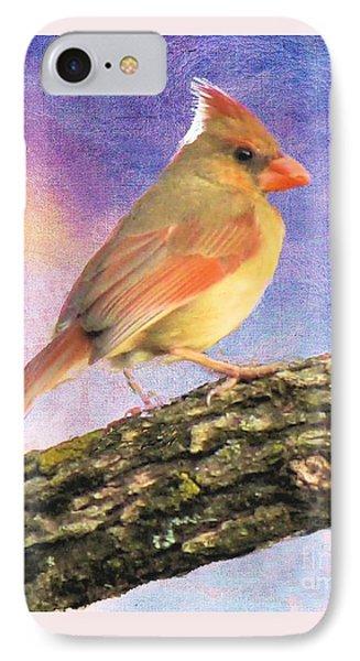 Female Cardinal Away From Sun IPhone Case