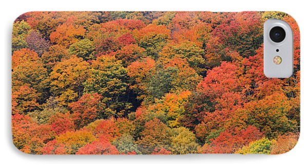 Field Of Trees From Above During Fall Foliage. IPhone Case