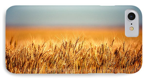 Rural Scenes iPhone 8 Case - Field Of Wheat by Todd Klassy