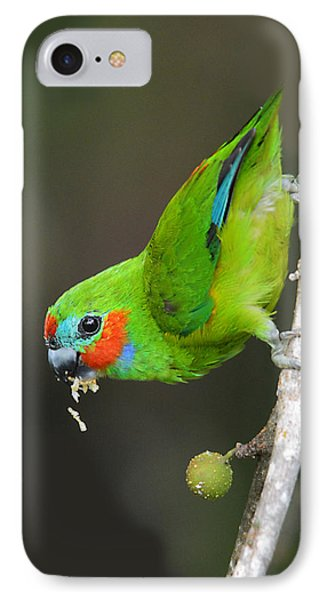 Figparrot Eating Figs IPhone Case