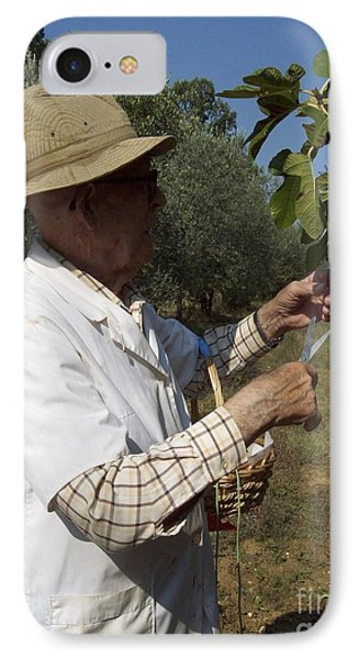 Fig's Harvest In Loppiano IPhone Case