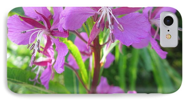Fireweed 3 IPhone Case