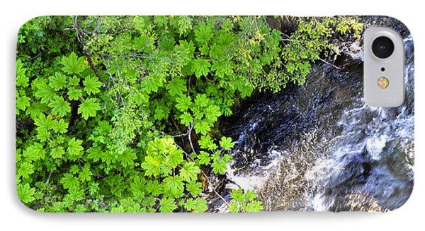 Fish Creek In Summer IPhone Case