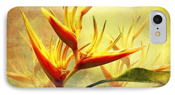 Flames Of Paradise IPhone Case