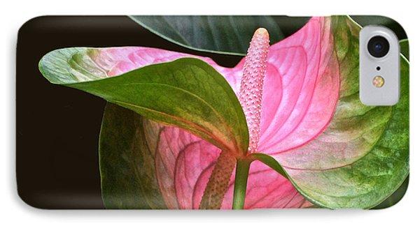 Flamingo Flower IPhone Case
