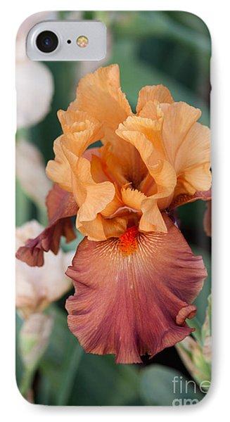 Floral 12 IPhone Case