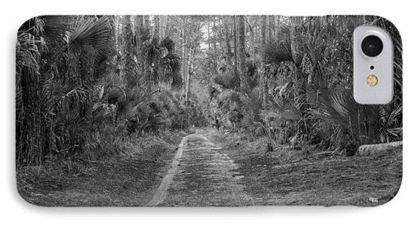 Florida Forest  Lan 381 IPhone Case