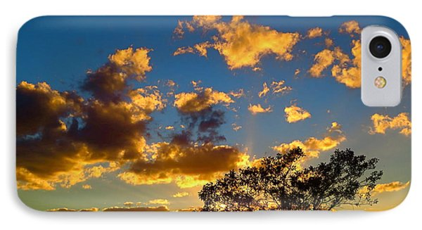 Florida. Loxahatchee Landscape At Sunset 5. IPhone Case