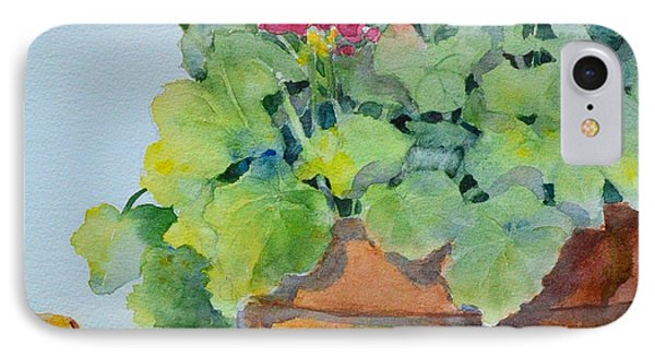 Flowers And Clay Pots IPhone Case