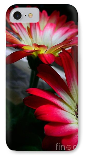 Flowers Just For Mr. Toes IPhone Case