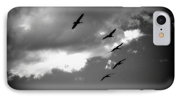 Flying Canada Geese IPhone Case