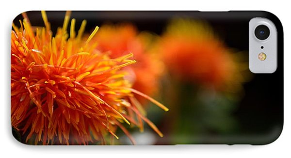 Focused Safflower IPhone Case
