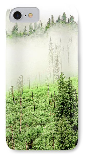 Fog And Trees IPhone Case