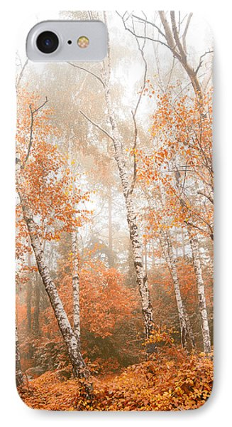 Foggy Autumn Aspens IPhone Case