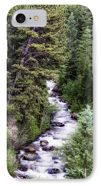 Forest Cascade IPhone Case
