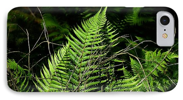 Forest Ferns IPhone Case