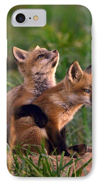 Fox Cub Buddies IPhone Case